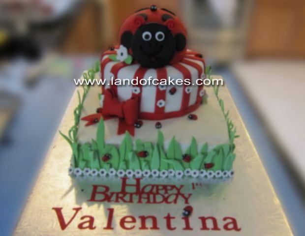 Images Of Ladybug Birthday Cakes